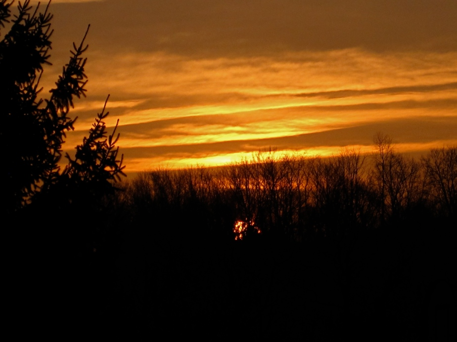 Sunrise January 8, 2013
