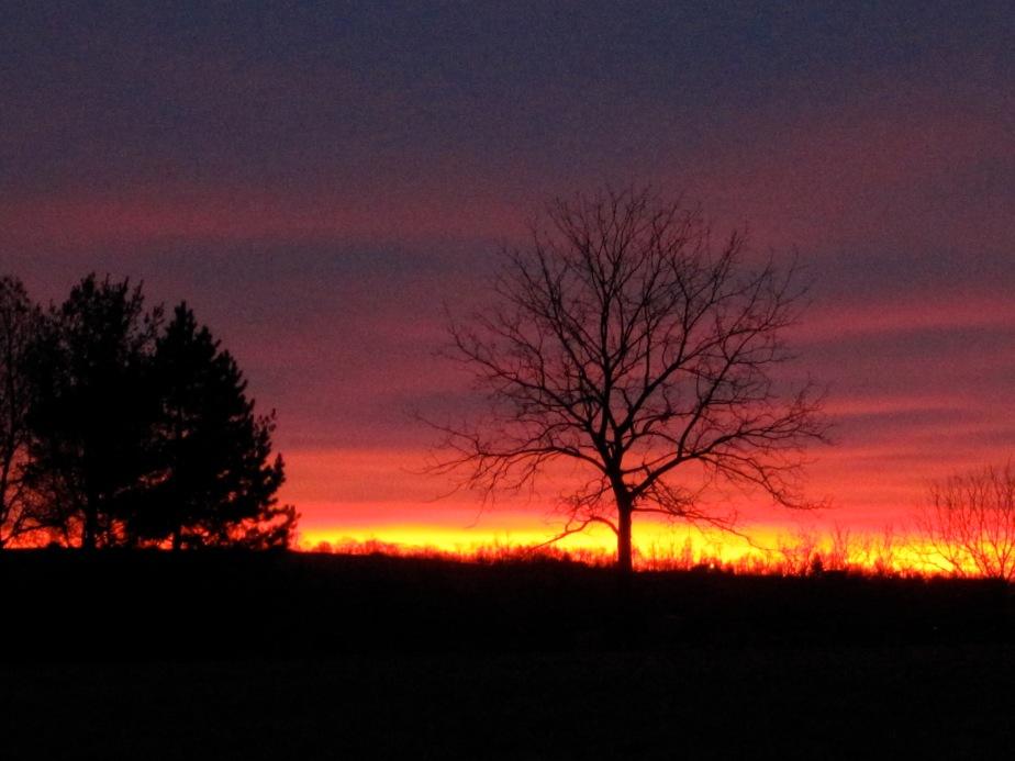 Sunrise January 24, 2013