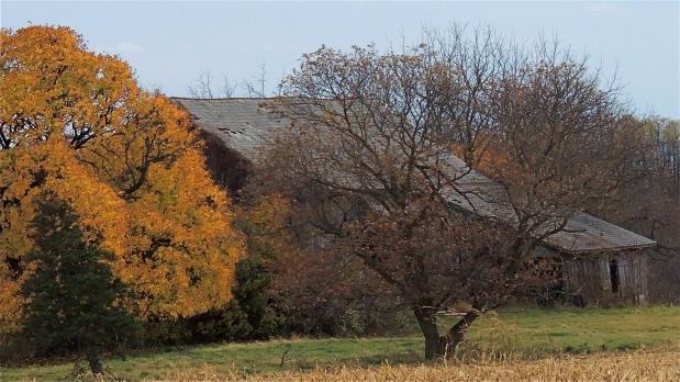 Slate-roofed barn