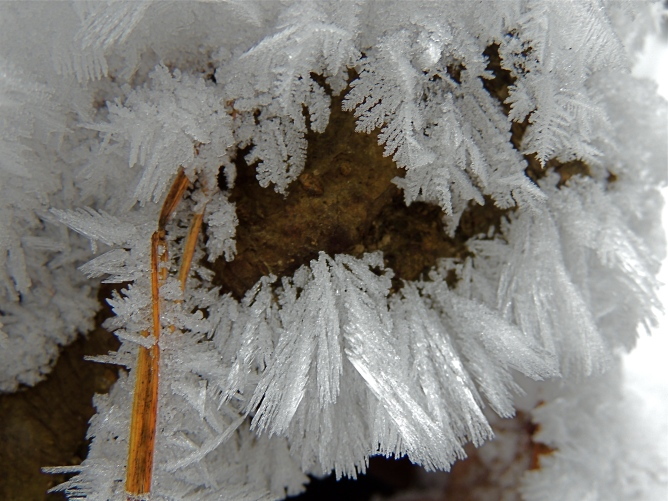 Ice Crystals - 3