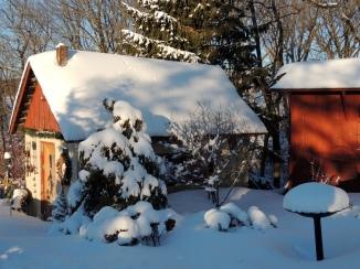 Potting Shed Garden under snow