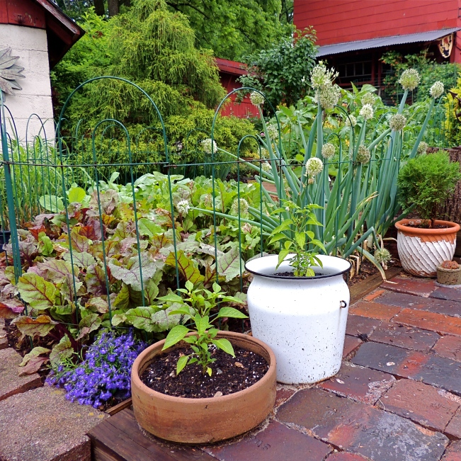 Terraced vegetable garden