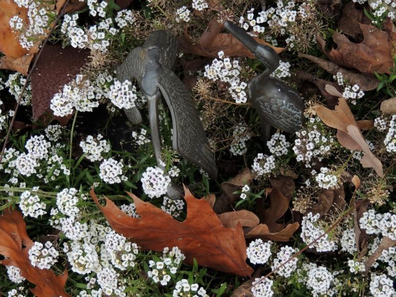 Brass cranes hidden in aylssum blossoms
