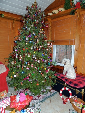 Our family Christmas tree is located in  the three season porch turned into a year round family room