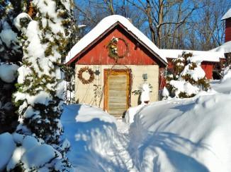 Potting shed blizzard 2016