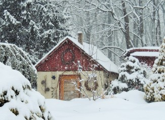 The potting shed under a blanket of snow