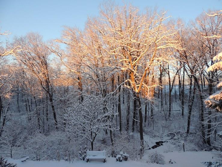 snow February 18, 2018