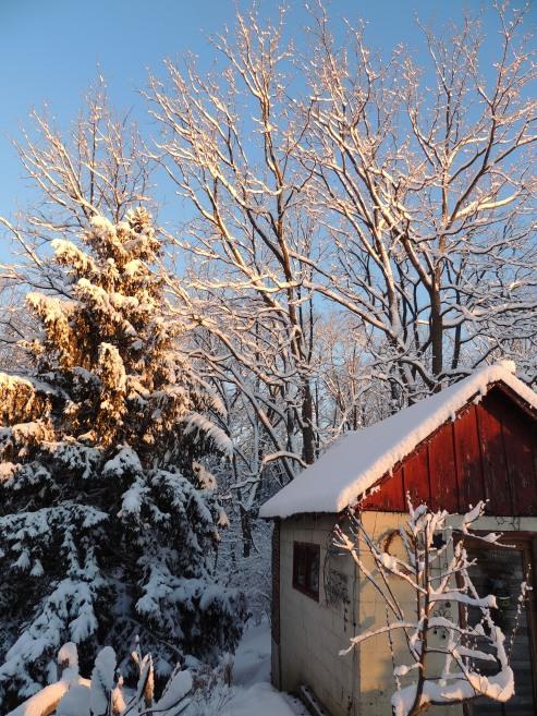 Snow 2 February 18, 2018