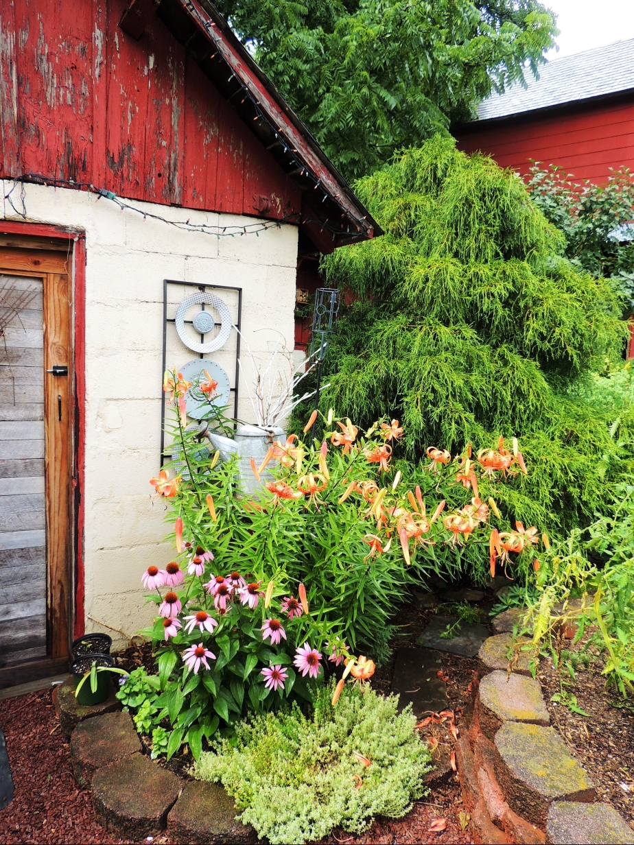 potting shed in July