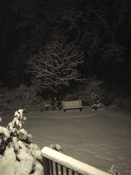 A late winter's nightr